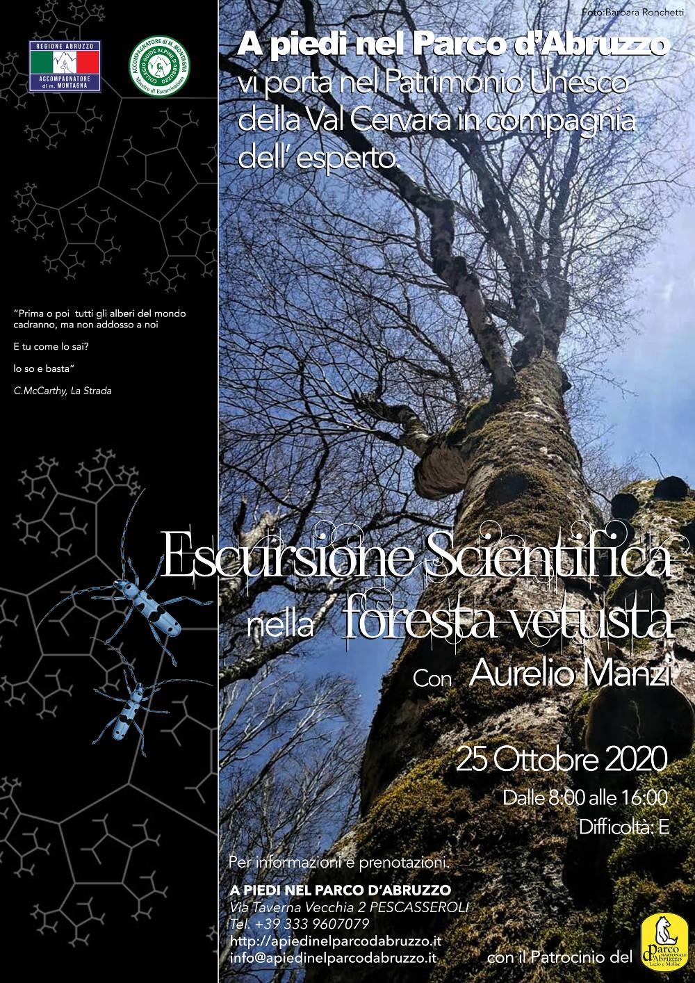 Escursione scientifica nella Foresta Vetusta con Aurelio Manzi